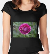 Tantalizing Trailblazer Women's Fitted Scoop T-Shirt