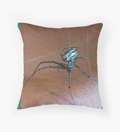 Flowerpot Spider Throw Pillow