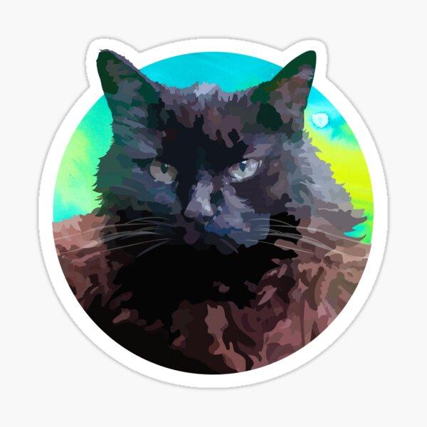 Peluso el gato Pegatina