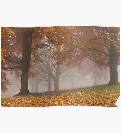 Autumn Fog 3 Poster