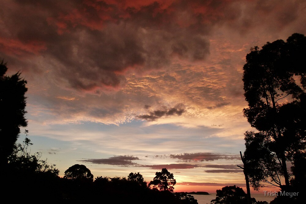 Stormy Weather by Trish Meyer
