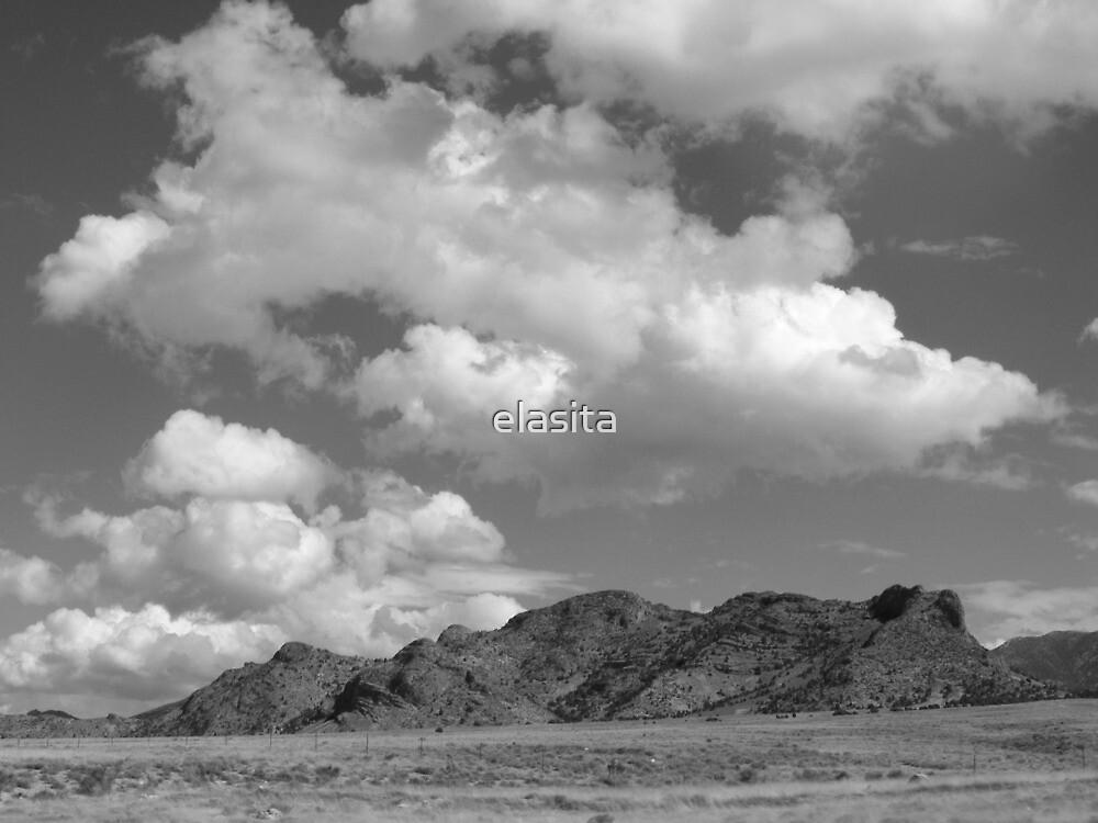Snake Valley B&W by elasita