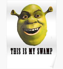 This is my swamp Poster
