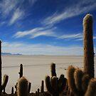 salt desert bolivia uyuni by Ty Cooper