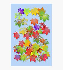 Falling Maple Leaves Photographic Print