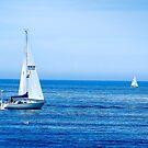 Sailing Heaven by Rebecca Bryson