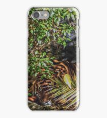Sleeping Tiger  iPhone Case/Skin