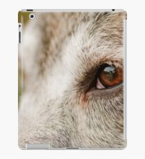 Mustang Eye- Animal Collection  iPad Case/Skin