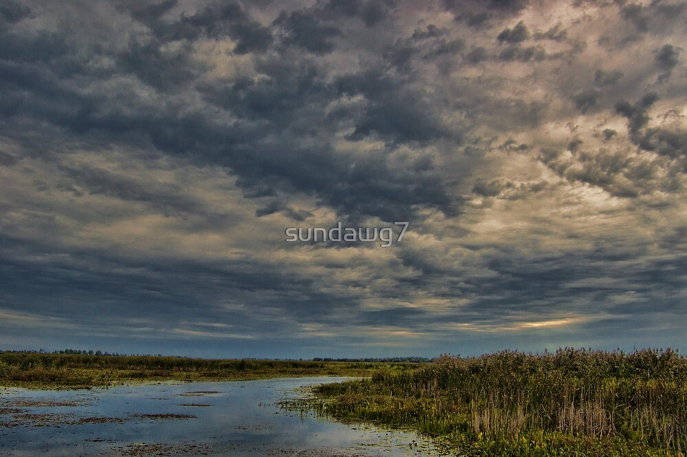 The Drama Above by sundawg7