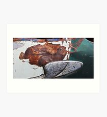 Tropical Rust Fish Art Print