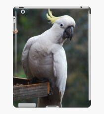 Hey Good Lookin' iPad Case/Skin