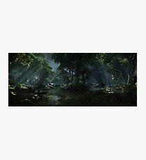 Crysis 3 Photographic Print