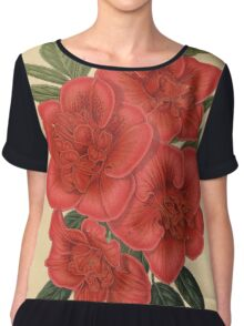 Azalea Indica Flower Art Chiffon Top