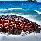Giant's Causeway at Fingal Head  by Michael Matthews
