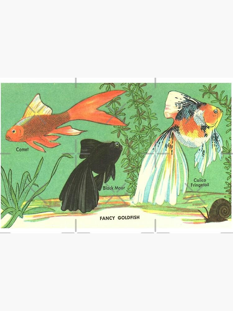 Fancy Goldfish - Vintage Retro Aquarium Illustration by elevens