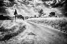 Crossroads by Nigel Bangert