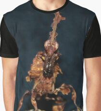 Ghost Mantis - Phyllocrania paradoxa Graphic T-Shirt