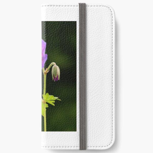 Geranium in Flower iPhone Wallet