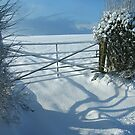 Gate in the Snow by Tom Carswell