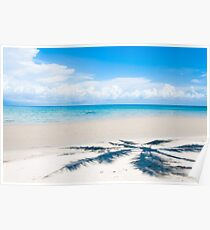 Shadow of palm tree over tropical white sand beach Poster