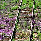 Railway decorations, Warwick by hans p olsen
