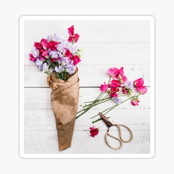 Still Life Sweet Peas with Scissors Sticker
