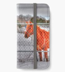 Lina and the Horse HDR iPhone Wallet/Case/Skin