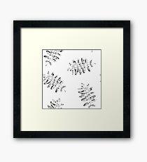 Leaves of mountain ash. Framed Print