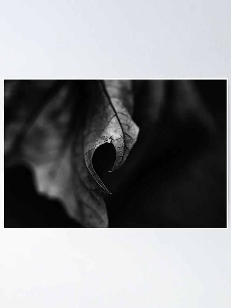 Alternate view of Leaf I Poster