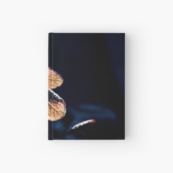 Glow Hardcover Journal