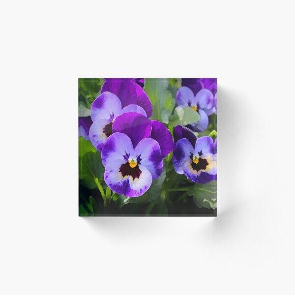Purple Pansy Acrylic Block
