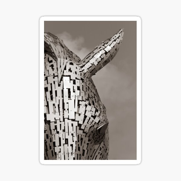 Close up of a Kelpie in Black and White Sepia tone Sticker