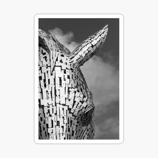 Close up of a Kelpie in Black and White Sticker