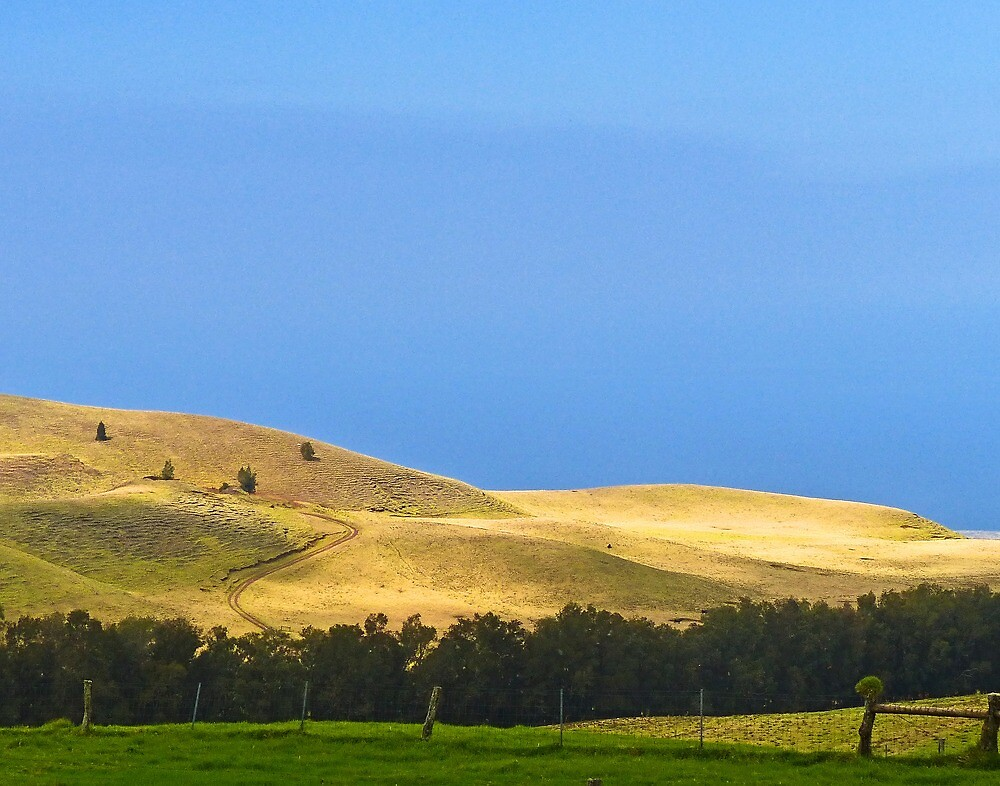 North end ranchland by Linda Sparks