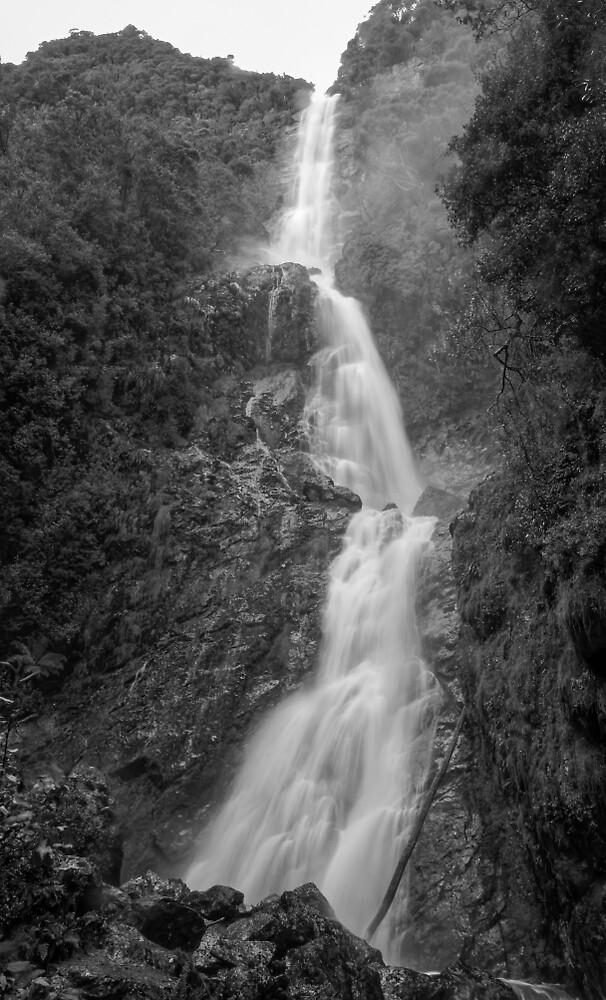 Montezuma Falls - Tasmania - Australia by TonyCrehan