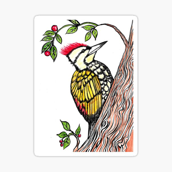 Woodpecker Sticker