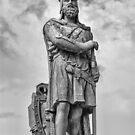 Robert the Bruce by M S Photography/Art