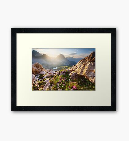 Bergparadies Framed Print