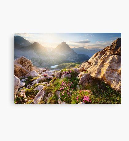 Bergparadies Canvas Print