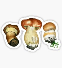 Wild mushrooms. Hand drawn watercolor painting Sticker