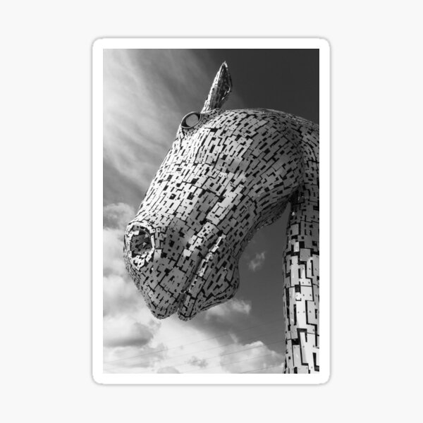 Looking up at a Falkirk Kelpie in Black and White Sticker