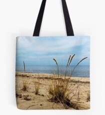 Sheldon Marsh - Springtime Beach Tote Bag