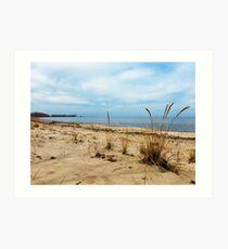 Sheldon Marsh - Springtime Beach Art Print
