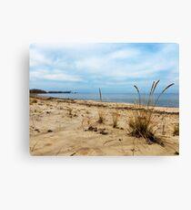 Sheldon Marsh - Springtime Beach Canvas Print