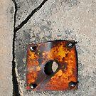 Rusty Plate by Michael  Herrfurth