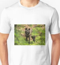 Black Wolf In Forest T-Shirt