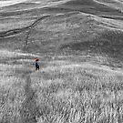 Walking In Grass by Jonas Bohlin