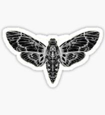 The Moth Sticker