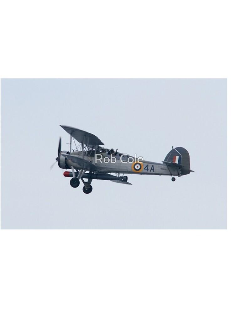 Royal Navy Swordfish Vintage Bi-Plane by robcole