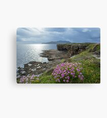 Muckross Head, Co. Donegal Canvas Print